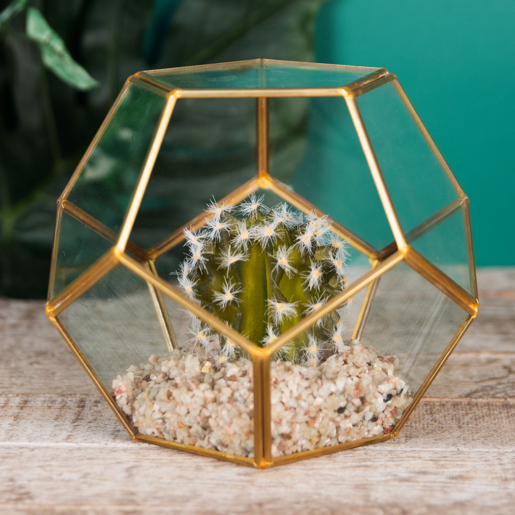 Glass Hexagonal Planter With Artificial Cactus Succulent Terrarium Style Home Accessory